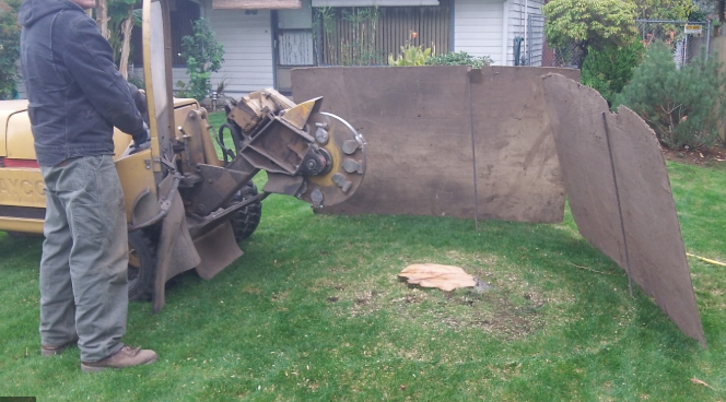 An image of stump grinding in Costa Mesa, CA